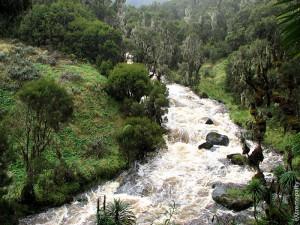 Рувензори восхождение Река